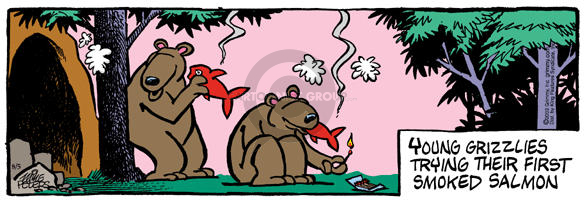 Comic Strip Mike Peters  Mother Goose and Grimm 2003-08-05 grizzly bear
