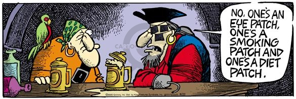 Comic Strip Mike Peters  Mother Goose and Grimm 2005-08-22 pirate
