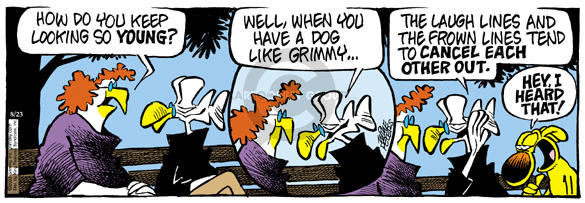 Comic Strip Mike Peters  Mother Goose and Grimm 2003-08-23 cancel