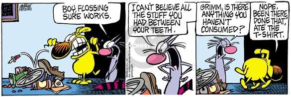 Comic Strip Mike Peters  Mother Goose and Grimm 2004-09-18 dental cleaning