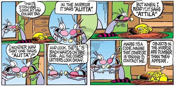 Comic Strip Mike Peters  Mother Goose and Grimm 2004-10-10 cat name