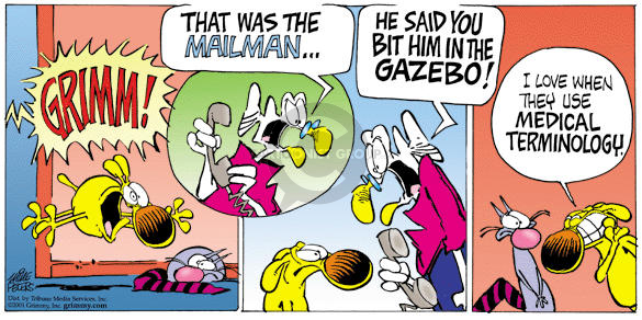 Comic Strip Mike Peters  Mother Goose and Grimm 2001-10-21 cat dog