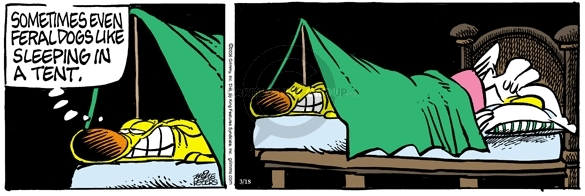 Comic Strip Mike Peters  Mother Goose and Grimm 2006-03-18 camping