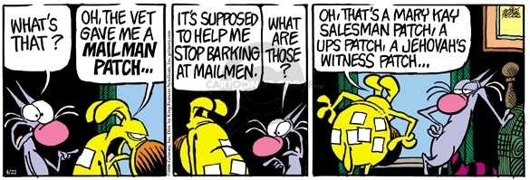Comic Strip Mike Peters  Mother Goose and Grimm 2006-04-22 salesman