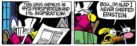 Comic Strip Mike Peters  Mother Goose and Grimm 2006-07-04 genius