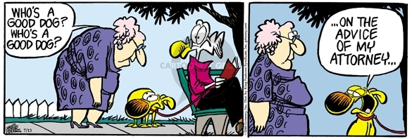 Comic Strip Mike Peters  Mother Goose and Grimm 2006-07-13 decline