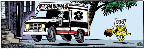 Comic Strip Mike Peters  Mother Goose and Grimm 2006-08-05 paramedic