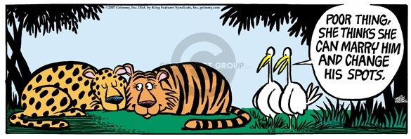 Comic Strip Mike Peters  Mother Goose and Grimm 2007-04-10 tiger