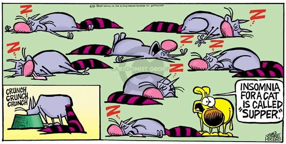 Comic Strip Mike Peters  Mother Goose and Grimm 2007-04-29 insomnia