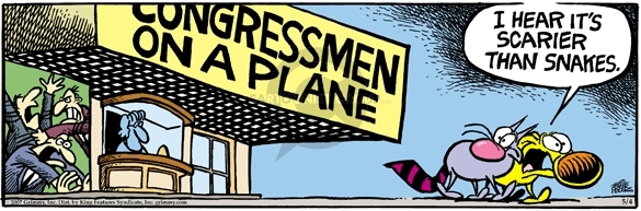 Comic Strip Mike Peters  Mother Goose and Grimm 2007-05-04 Congress