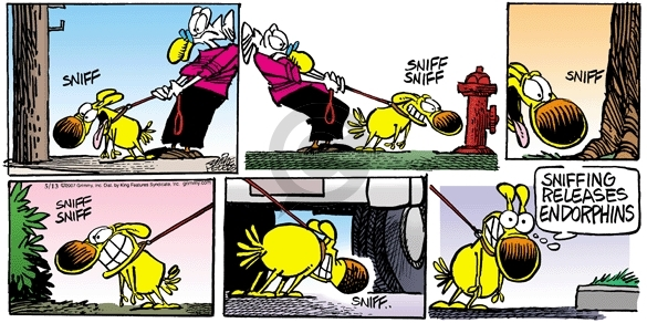 Comic Strip Mike Peters  Mother Goose and Grimm 2007-05-13 happy dog