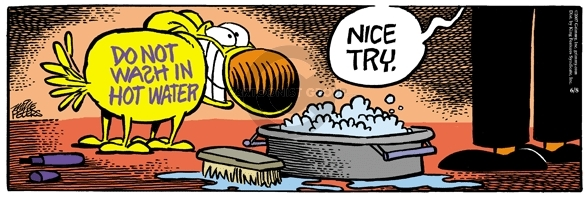 Comic Strip Mike Peters  Mother Goose and Grimm 2007-06-08 cleanliness