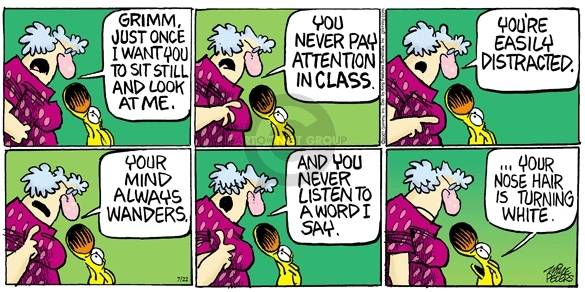 Comic Strip Mike Peters  Mother Goose and Grimm 2007-07-22 student teacher