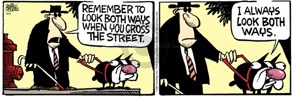 Comic Strip Mike Peters  Mother Goose and Grimm 2007-08-22 blind