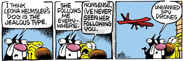 Comic Strip Mike Peters  Mother Goose and Grimm 2008-01-25 spy