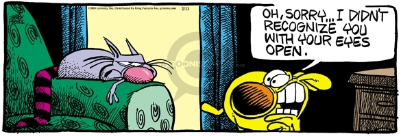 Comic Strip Mike Peters  Mother Goose and Grimm 2008-02-11 cat