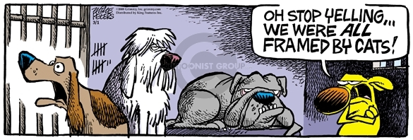 Comic Strip Mike Peters  Mother Goose and Grimm 2008-03-01 cat