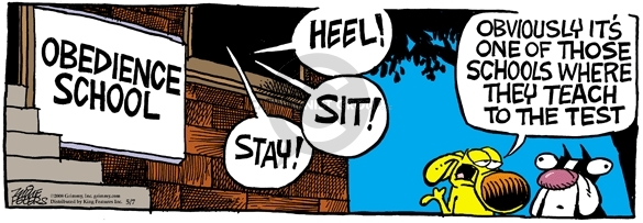 Comic Strip Mike Peters  Mother Goose and Grimm 2008-05-07 heel