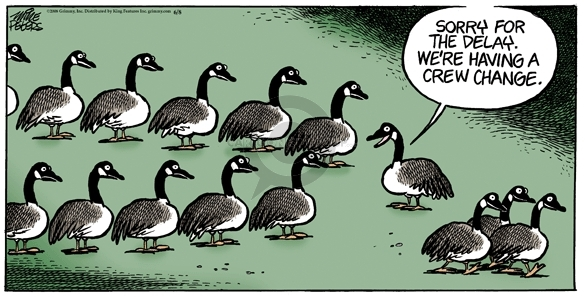 Comic Strip Mike Peters  Mother Goose and Grimm 2008-06-08 airline