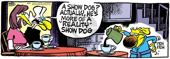 Comic Strip Mike Peters  Mother Goose and Grimm 2008-06-23 reality