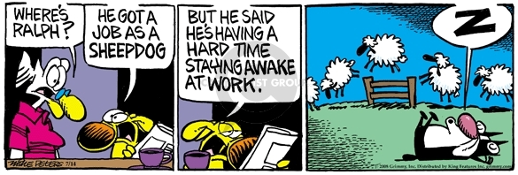 Comic Strip Mike Peters  Mother Goose and Grimm 2008-07-14 awake