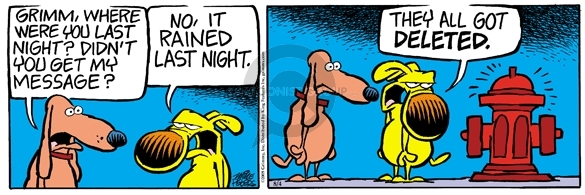 Comic Strip Mike Peters  Mother Goose and Grimm 2008-08-04 erase