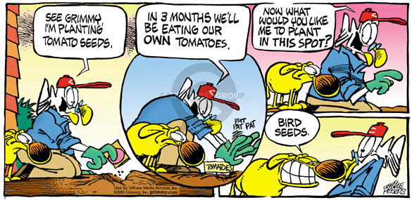 Comic Strip Mike Peters  Mother Goose and Grimm 2001-11-04 gardening