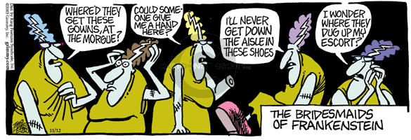 Comic Strip Mike Peters  Mother Goose and Grimm 2003-11-12 down