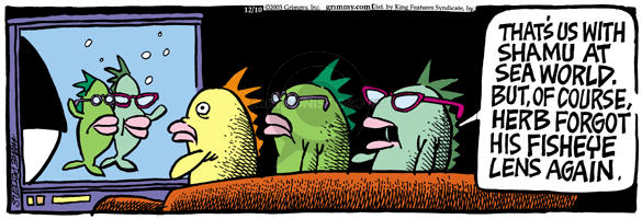 Comic Strip Mike Peters  Mother Goose and Grimm 2003-12-10 lens