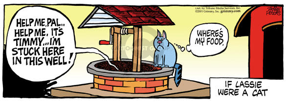 Comic Strip Mike Peters  Mother Goose and Grimm 2001-12-24 water