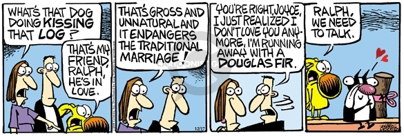 Comic Strip Mike Peters  Mother Goose and Grimm 2008-12-17 traditional marriage
