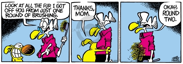 Cartoonist Mike Peters  Mother Goose and Grimm 2009-01-13 dog grooming