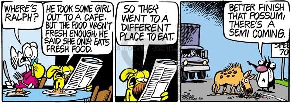 Comic Strip Mike Peters  Mother Goose and Grimm 2009-05-06 different