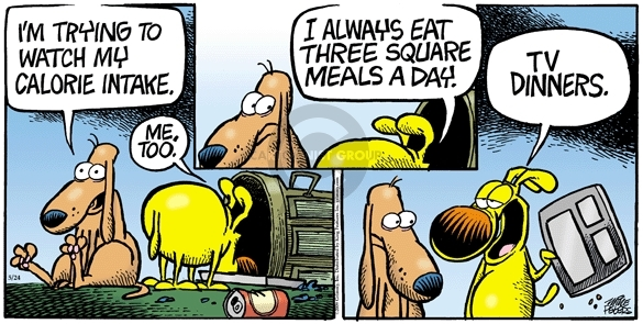 Comic Strip Mike Peters  Mother Goose and Grimm 2009-05-24 nutrition