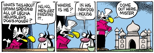 Comic Strip Mike Peters  Mother Goose and Grimm 2009-06-18 house