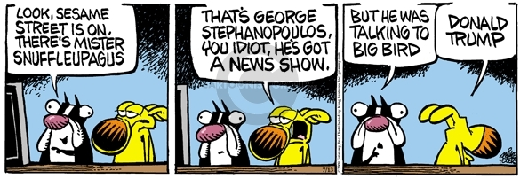 Comic Strip Mike Peters  Mother Goose and Grimm 2009-07-13 television news