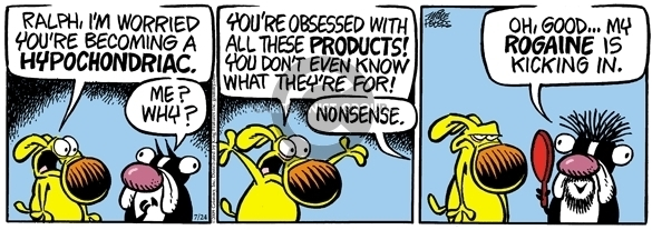 Comic Strip Mike Peters  Mother Goose and Grimm 2009-07-24 purpose