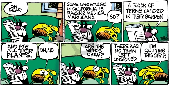 Oh dear. Some laboratory in California is raising medical marijuana. So? A flock of terns landed in their garden and ate all their plants. Oh, no. Are the birds okay? There was no tern left unstoned. Im quitting this strip.