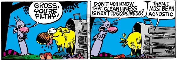Comic Strip Mike Peters  Mother Goose and Grimm 2009-10-06 cleanliness