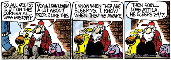 Comic Strip Mike Peters  Mother Goose and Grimm 2009-12-24 awake