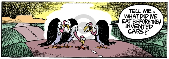Comic Strip Mike Peters  Mother Goose and Grimm 2009-12-28 scavenger