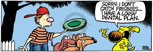 Comic Strip Mike Peters  Mother Goose and Grimm 2009-12-31 dog teeth