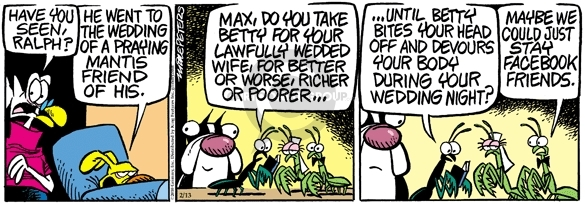 Comic Strip Mike Peters  Mother Goose and Grimm 2010-02-13 maybe