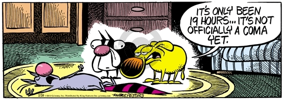 Comic Strip Mike Peters  Mother Goose and Grimm 2010-02-20 conscious