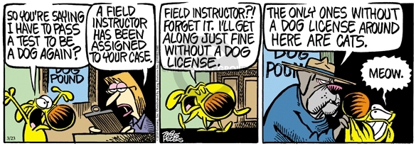 Comic Strip Mike Peters  Mother Goose and Grimm 2010-03-23 dog and cat