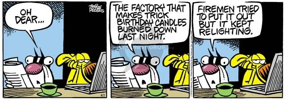 Comic Strip Mike Peters  Mother Goose and Grimm 2010-04-02 birthday