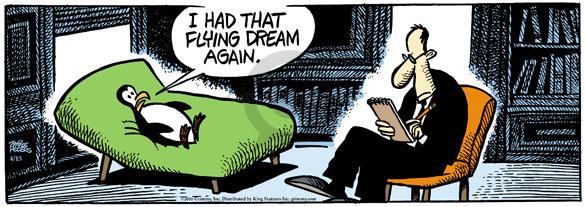 I had that flying dream again.