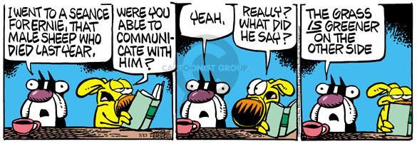Comic Strip Mike Peters  Mother Goose and Grimm 2010-05-13 spirit