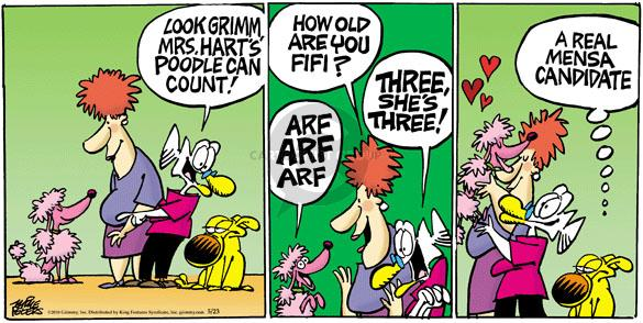 Comic Strip Mike Peters  Mother Goose and Grimm 2010-05-23 arf