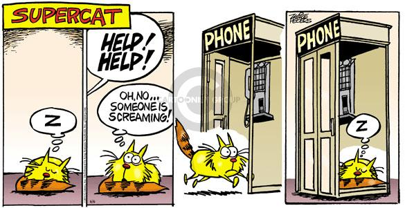 Comic Strip Mike Peters  Mother Goose and Grimm 2010-06-06 cat behavior